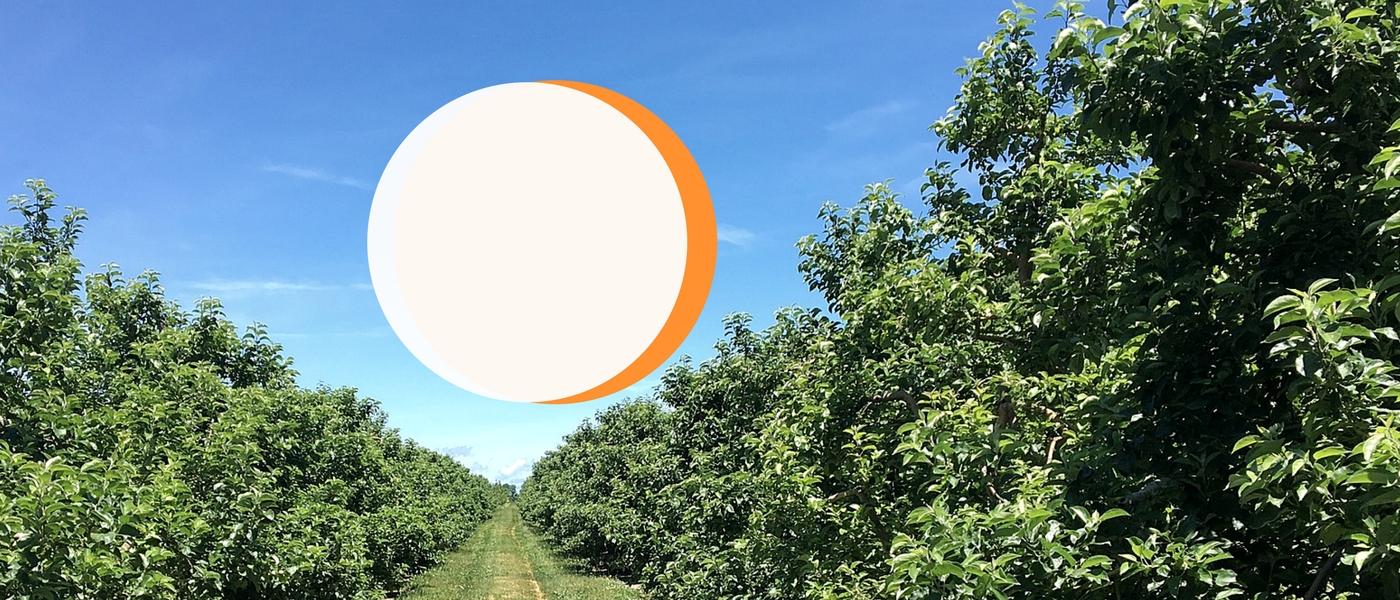 zimex-smart-agro-agricultura-inteligente-v2b