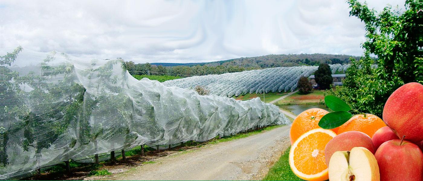 drape-net-malla-agricola-b-1